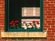 Fenster in historischem Gebäude 2 Stockbild