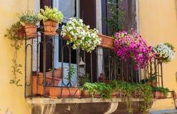 Fenster im alten Haus verziert mit Blumentöpfen und -blumen Stockfoto