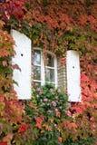 Fenster im Herbst Stockfoto