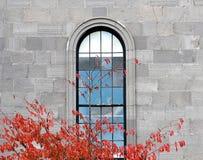 Fenster im Steingebäude und in farbigen Blättern Stockfotografie
