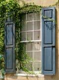 Fenster mit blauen Fensterläden und den Reben, die um es wachsen Lizenzfreie Stockfotografie