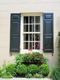 Fenster mit blauen Fensterläden und einem Blumenkasten füllte mit blühenden Blumen Stockbilder