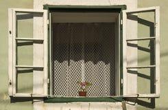 Fenster mit Blume Lizenzfreie Stockfotografie