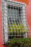 Fenster mit Blume und Gitter lizenzfreies stockbild