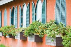 Fenster mit Blumen Stockbilder