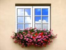 Fenster mit Blumen Lizenzfreie Stockfotografie