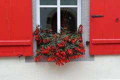 Fenster mit Blumen Lizenzfreies Stockfoto