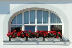 Fenster mit Blumen Stockfoto