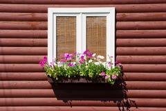 Fenster mit Blumen auf hölzerner Wand Stockfotografie