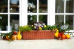 Fenster mit Blumenkasten Stockfotografie