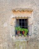 Fenster mit Blumentöpfen in Tossa de Mar Lizenzfreie Stockbilder