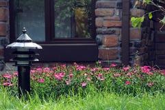 Fenster mit einem Flower-bed lizenzfreie stockfotos