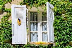 Fenster mit einer Zikade in Provence, Frankreich Lizenzfreie Stockfotos
