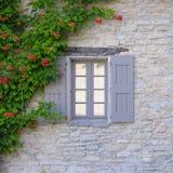 Fenster mit Fensterläden und Rebe Stockbild