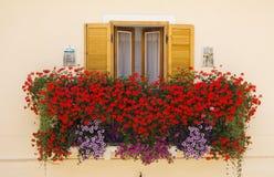 Fenster mit frischen Blumen stockfotografie