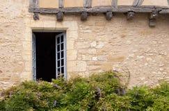 Fenster mit Glyzinie Stockbilder