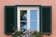 Fenster mit grünen Stangen und Blumen, rosa Wandhintergrund Lizenzfreies Stockfoto