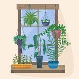 Fenster mit Houseplants und Blumen in den Töpfen Lizenzfreies Stockfoto