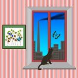 Fenster mit Katze und Schmetterling Stockbild