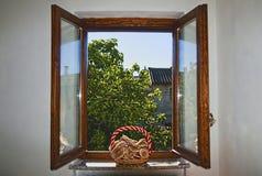 Fenster mit Pilzen Lizenzfreies Stockbild