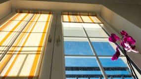 Fenster mit Vorhängen und Blume Stockbild