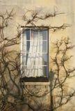 Fenster in niederwerfender Hochschule Lizenzfreie Stockfotos