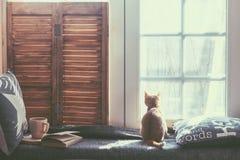 Fenster Seat Lizenzfreies Stockfoto