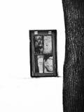 Fenster und Baum Stockfoto