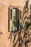 Fenster- und Baumschattenbild Lizenzfreie Stockbilder