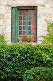 Fenster und Blätter Stockfotos