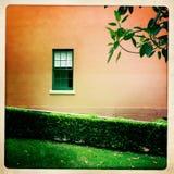 Fenster und Blätter Stockfotografie
