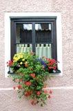 Fenster und Blume Lizenzfreies Stockbild