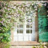 Fenster und Blumen Stockfotos