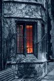 Fenster und Efeu Stockfotos