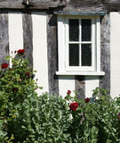 Fenster und Rosenbusch Stockbilder