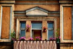 Fenster in Vilnius Lizenzfreie Stockfotos