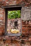 Fenster von Buddha Lizenzfreies Stockfoto
