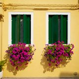 Fenster von Burano Lizenzfreie Stockbilder
