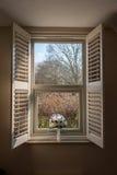 Fensteransicht und -blumen Stockfotografie