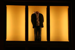 Fensterbaumuster Lizenzfreies Stockbild