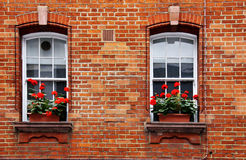 Fensterkästen Stockfotografie