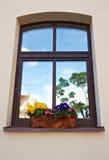 Fensterkasten mit Blumen Lizenzfreie Stockfotos