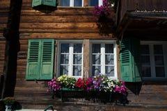 Fensterläden Fenster und Blumen Stockfotografie
