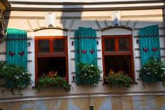 Fensterläden und Blumen in Krakau Polen Lizenzfreie Stockbilder