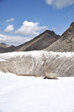 Fente dans le glacier de montagne Images stock