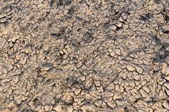 Fente de boue Photo stock