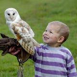 Fenton Bird of Prey Centre Stock Photos
