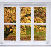 Fenêtre d'automne Photo libre de droits