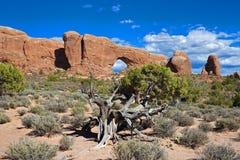 Fenêtre du nord, parc national de voûtes Images stock