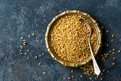 Fenugreek σπόροι στο μεταλλικό πιάτο, καρύκευμα, μαγειρικό συστατικό Στοκ Φωτογραφία